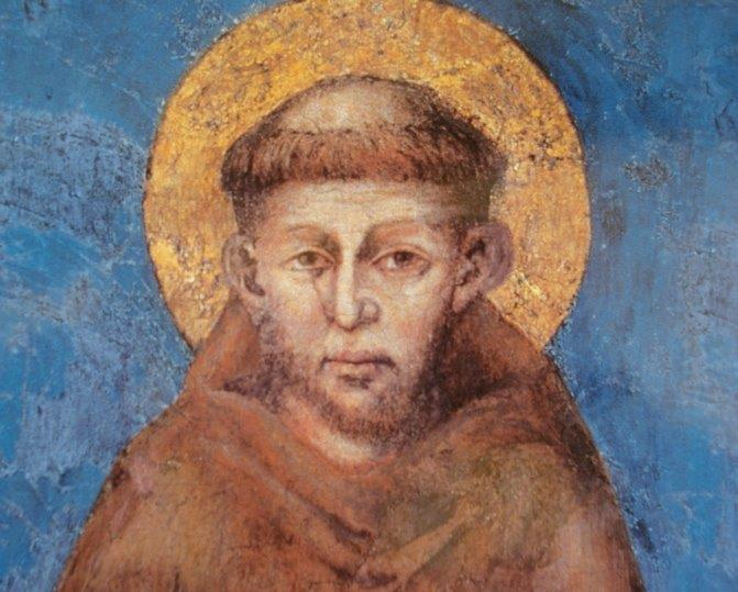 Citaten Franciscus Van Assisi : Startzondag oktober parochietuin wordt wijngaard de